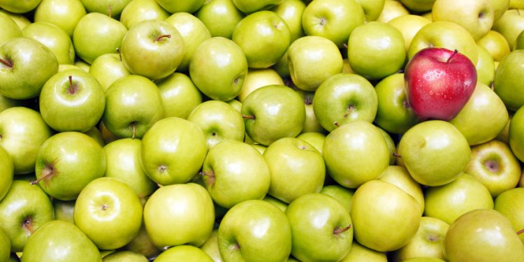 Apples to Apples: Comparing